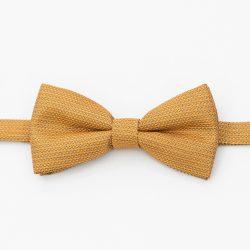 Papion galben elegant